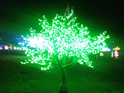 Hunter Valley Gardens Christmas Lights Spectacular & Scarborough Wine Co - Blog - Hunter Valley Gardens Christmas Lights ...